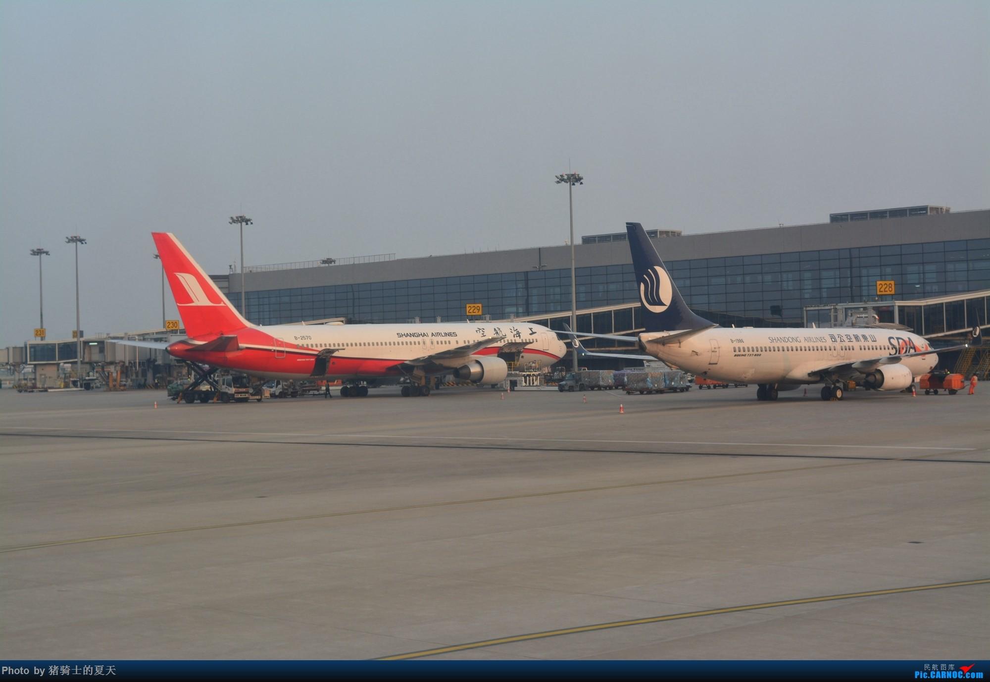 Re:[原创]2017年鸡鸭图 BOEING 767-300 B-2570 中国上海虹桥国际机场