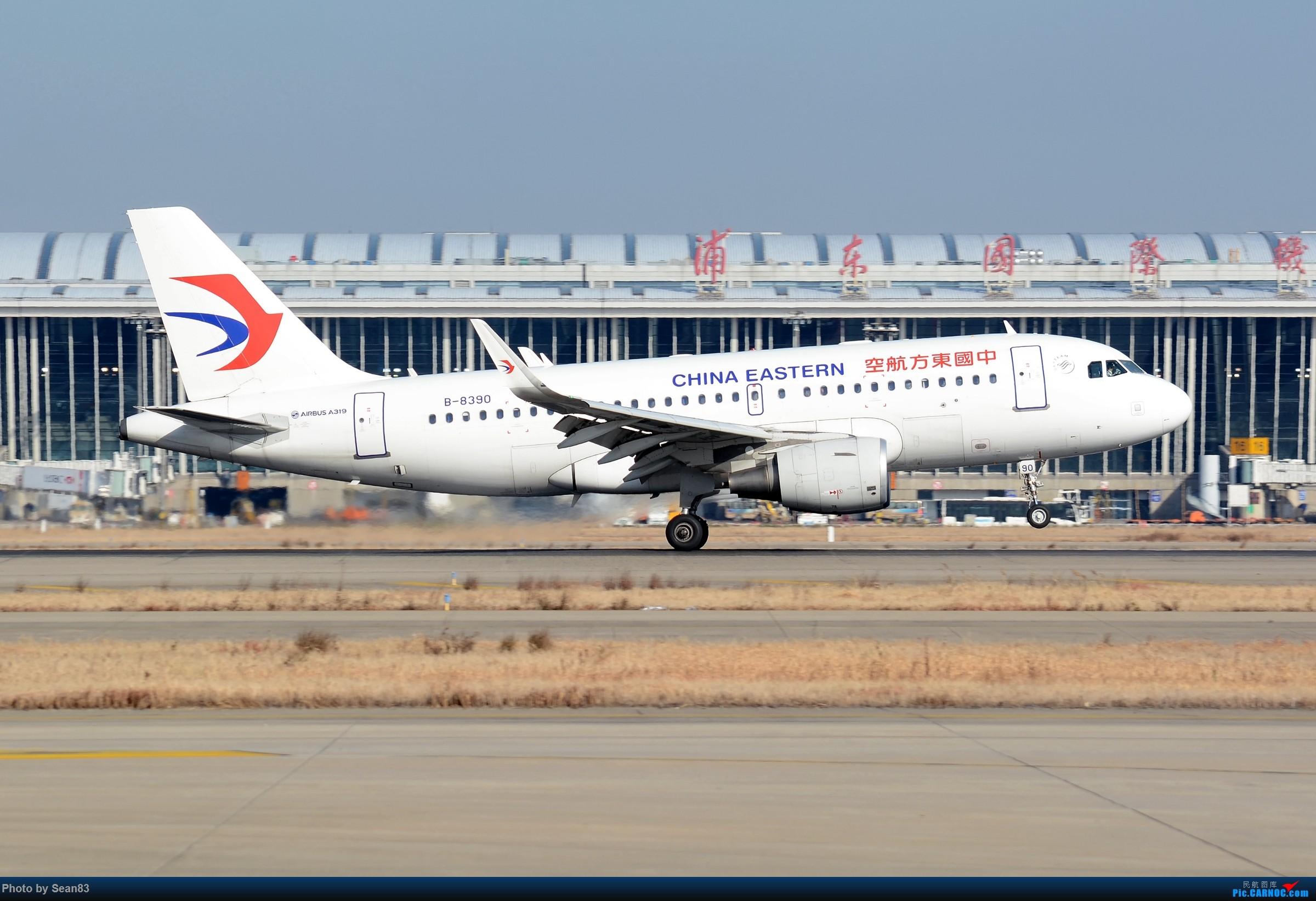 Re:[原创](PVG)空客宝贝 AIRBUS A319-100 B-8390 上海浦东国际机场