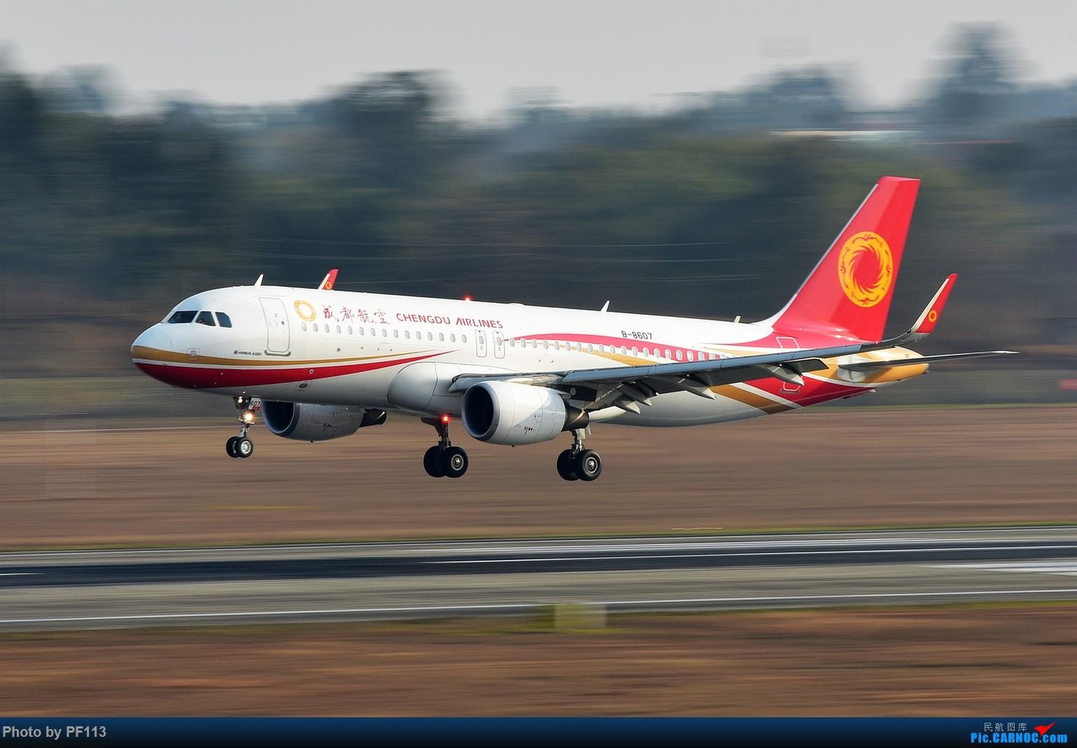 Re:[原创]CTU二跑道.着陆.3 AIRBUS A320-200 B-8607 中国成都双流国际机场