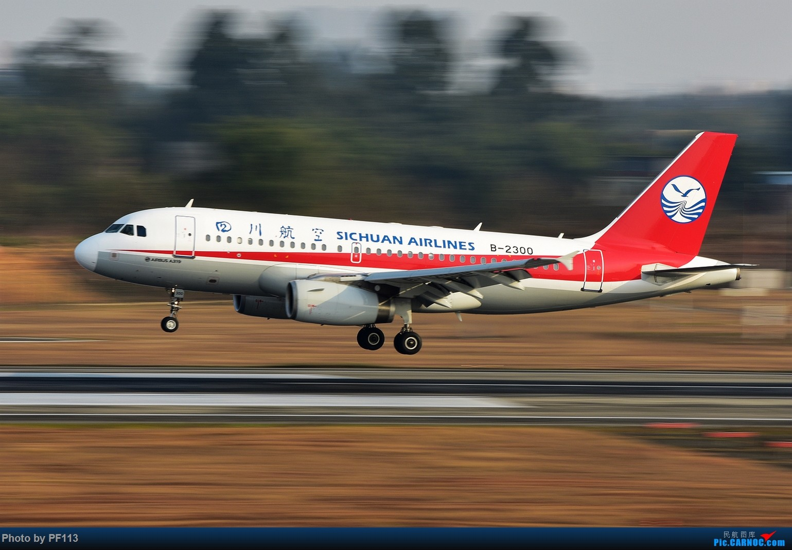 Re:[原创]CTU二跑道.着陆.3 AIRBUS A319-100 B-2300 中国成都双流国际机场
