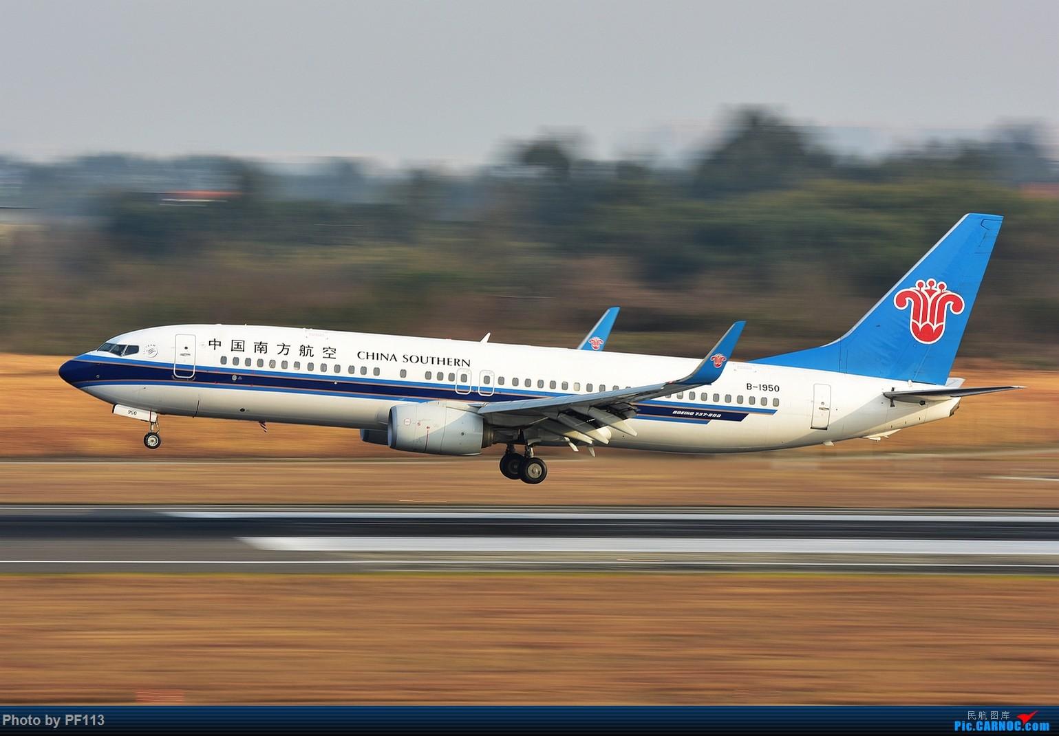 Re:[原创]CTU二跑道.着陆.3 BOEING 737-800 B-1950 中国成都双流国际机场