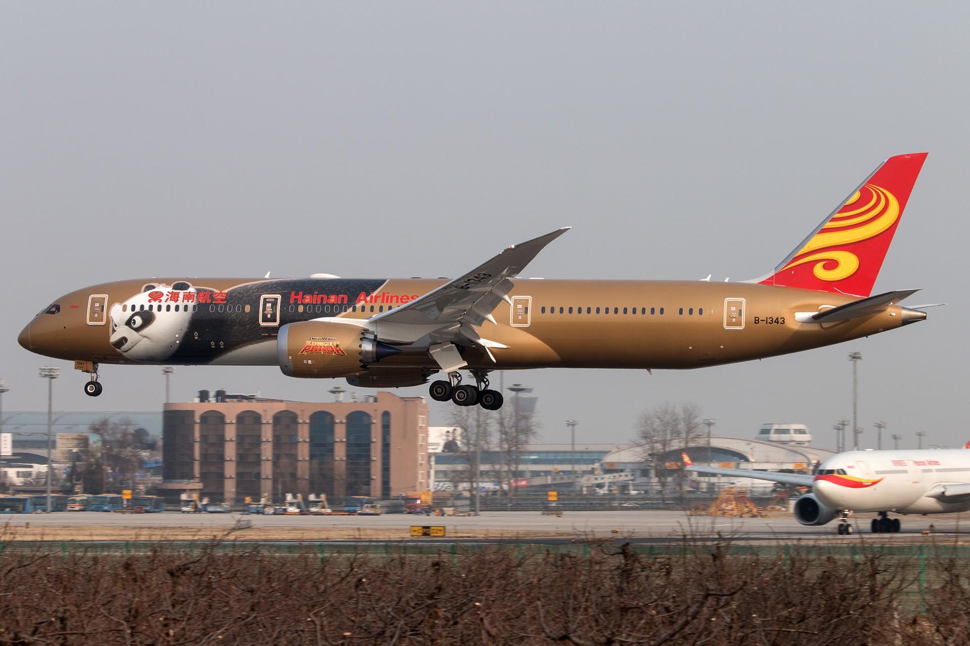[原创]金熊猫两张 BOEING 787-9 B-1343 中国北京首都国际机场