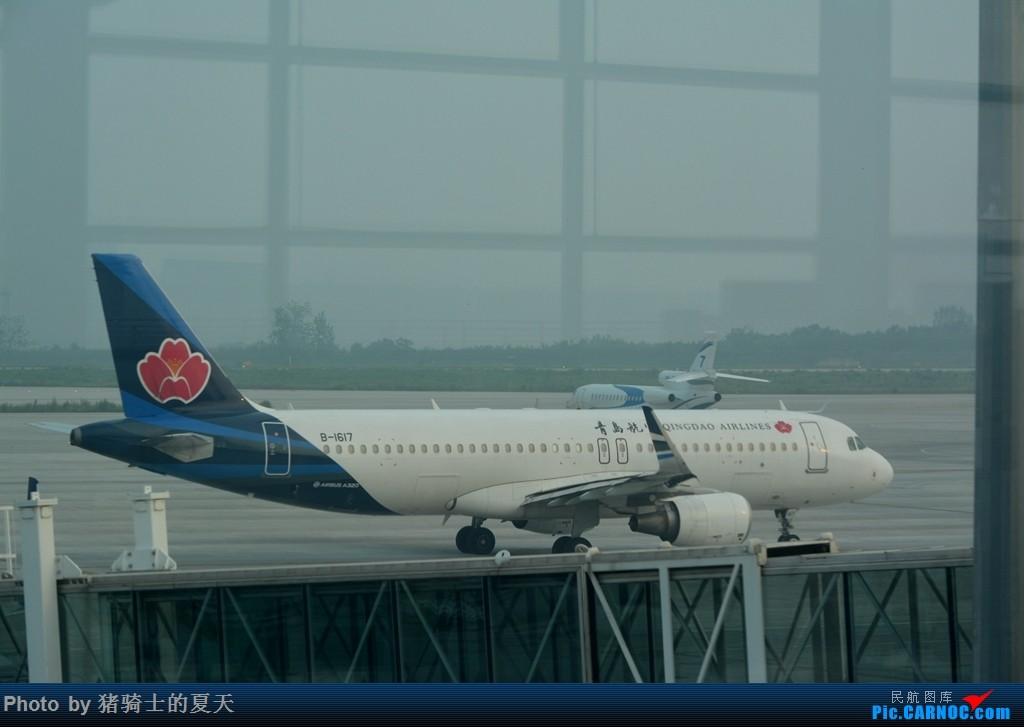 Re:[原创]2017鸡鸭图之烟大空中快线 AIRBUS A320-200 B-1617 中国烟台蓬莱国际机场