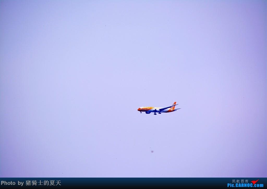 Re:[原创]2017鸡鸭图之烟大空中快线 BOEING 787  中国大连国际机场