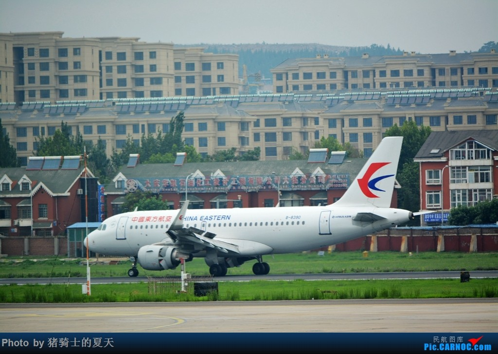 Re:[原创]2017鸡鸭图之烟大空中快线 AIRBUS A319-100 B-8390 中国大连国际机场