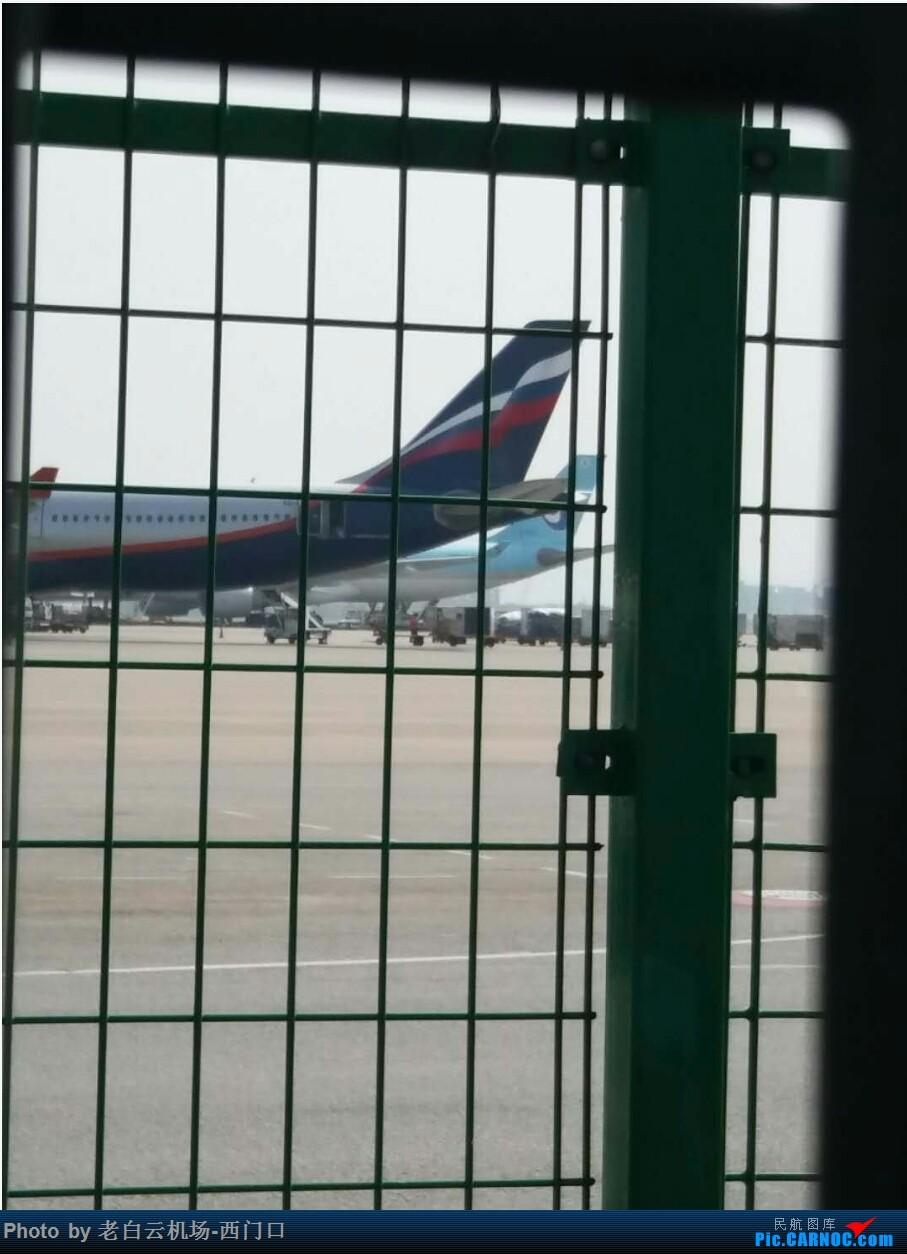 Re:[原创]我的拍飞机心情(广州) BOEING 777-300 HL7784 中国广州白云国际机场