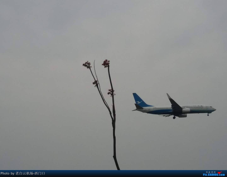 Re:[原创]【梁泽希拍机故事4】2018年第四次拍机 BOEING 737-800 B-5499 中国广州白云国际机场