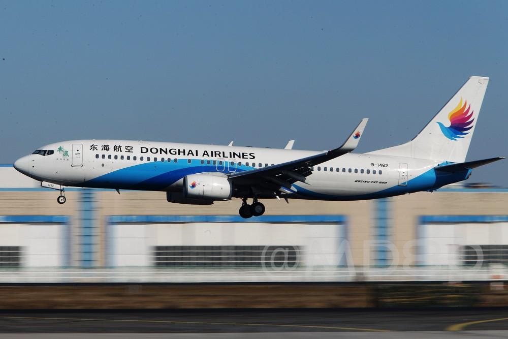 Re:[原创][DLC场外] 周末 BOEING 737-800 B-1462 中国大连国际机场