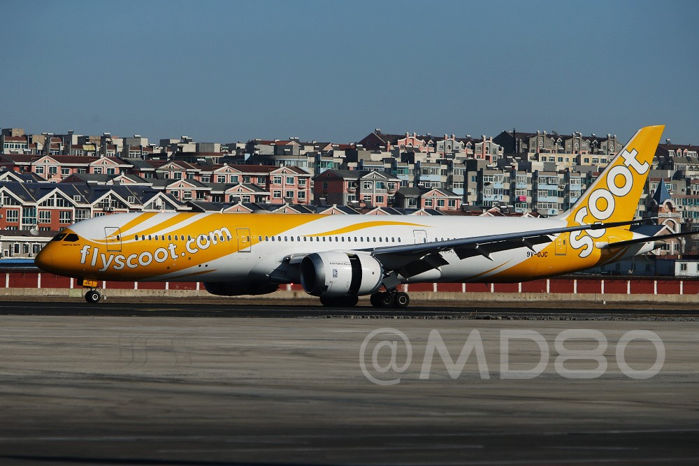 Re:[原创][DLC场外] 周末 BOEING 787 9V-OJC 中国大连国际机场
