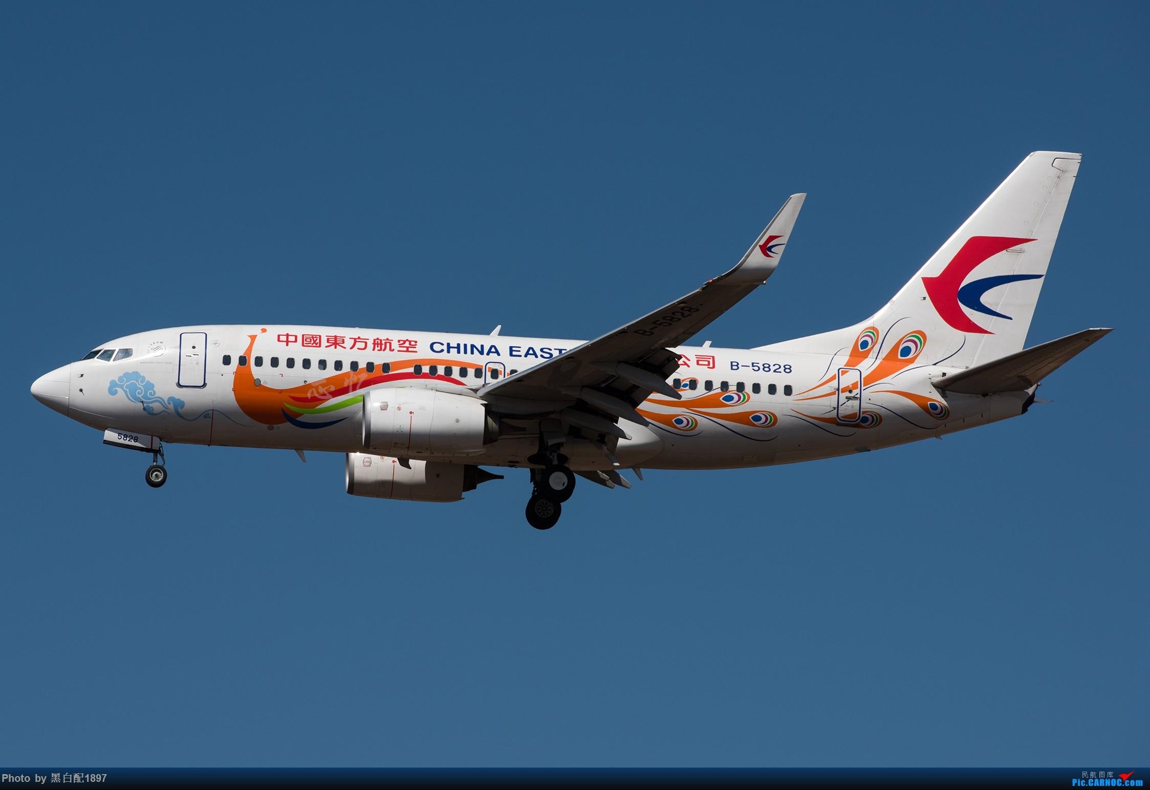Re:鸡年收官图第二版 BOEING 737-700 B-5828 中国昆明长水国际机场