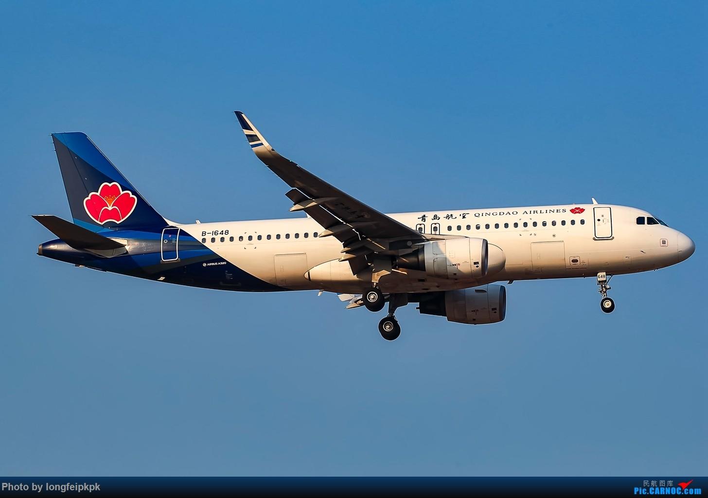 Re:[原创]【郑州飞友会】年初四CGO拍机 AIRBUS A320-200 B-1648 中国郑州新郑国际机场