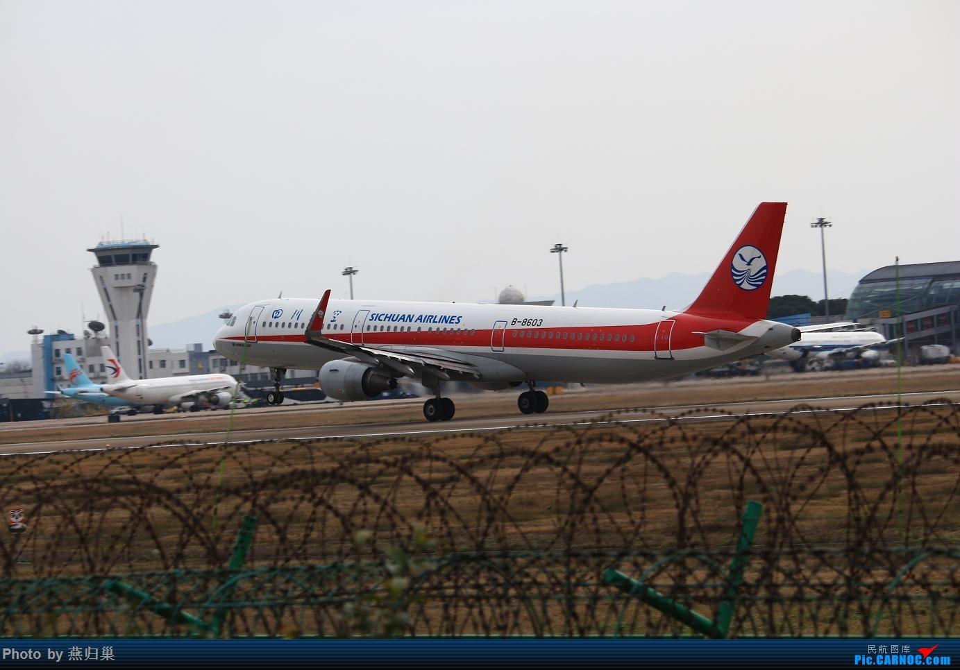 Re:[原创]【宁波飞友会】年前NGB拍机合集 AIRBUS A321-200 B-8603 中国宁波栎社国际机场