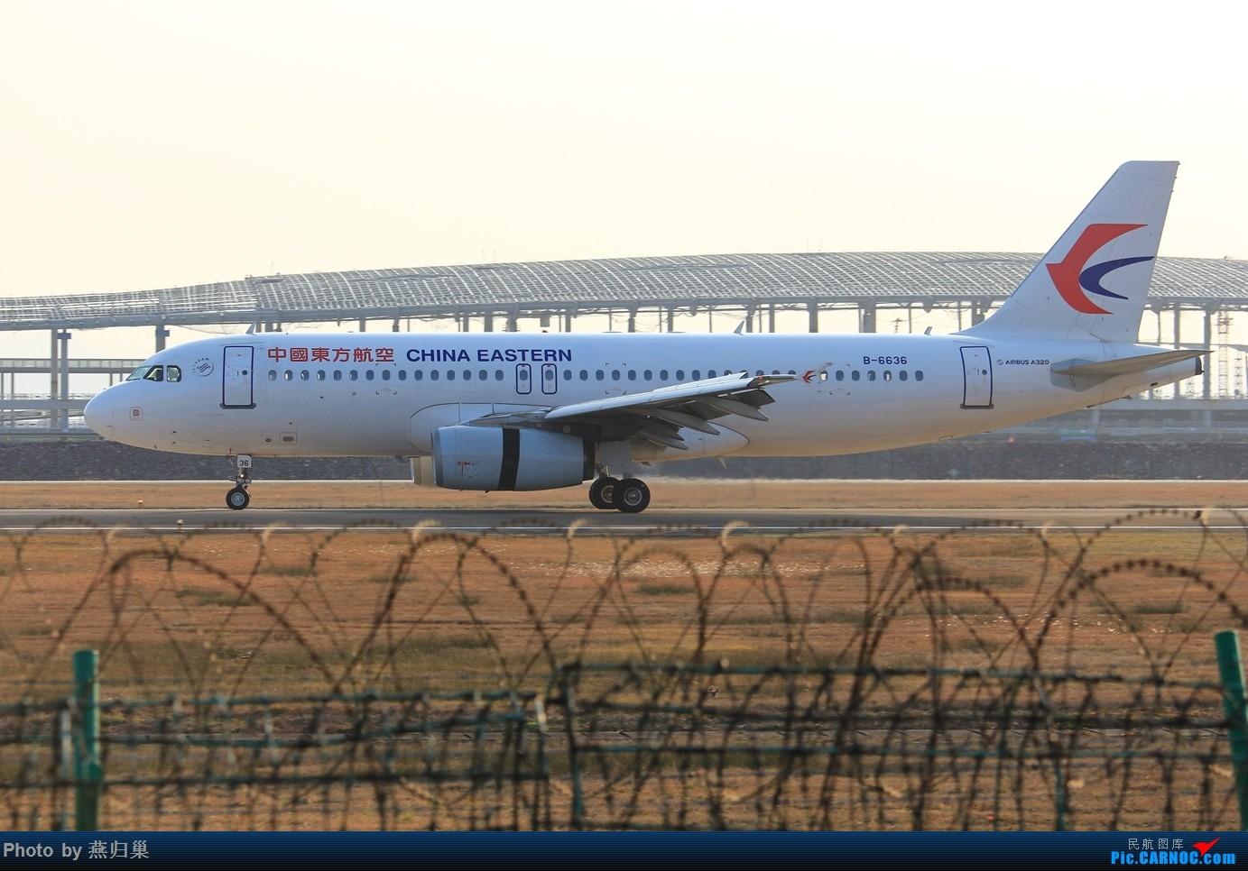 Re:[原创]【宁波飞友会】年前NGB拍机合集 AIRBUS A320-200 B-6636 中国宁波栎社国际机场