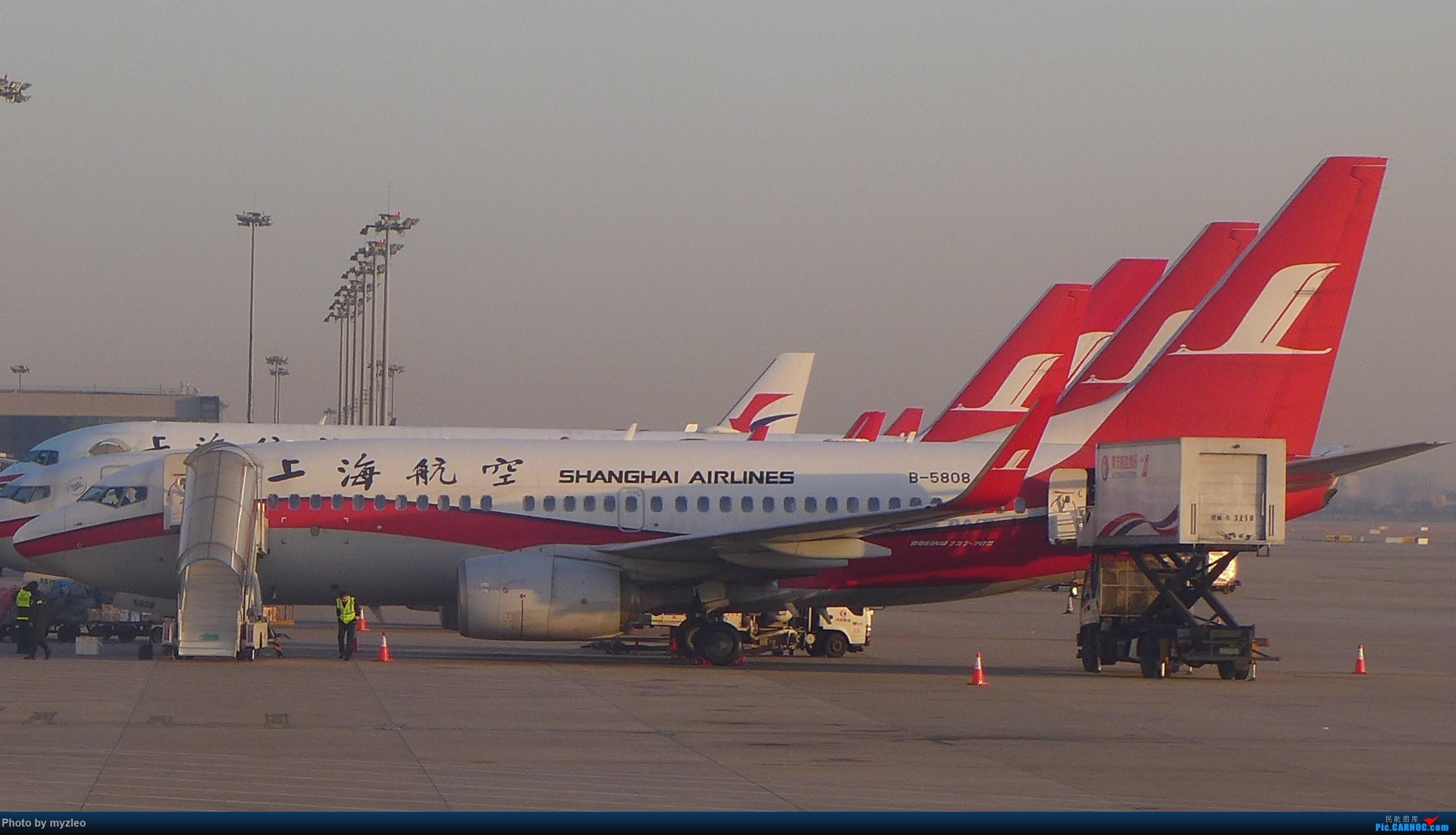 Re:[原创]【myzleo的游记1】六天五晚广州行——SHA-CAN上航商务舱初体验+广州城内 BOEING 737-700 B-5808 中国上海虹桥国际机场