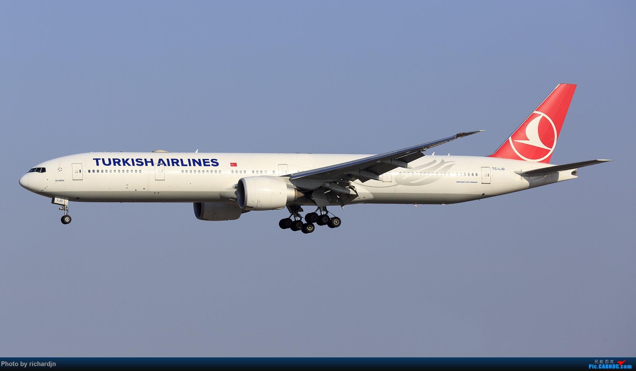 Re:[原创]新年第一撸~哈哈 BOEING 777-300ER TC-LJD 中国北京首都国际机场