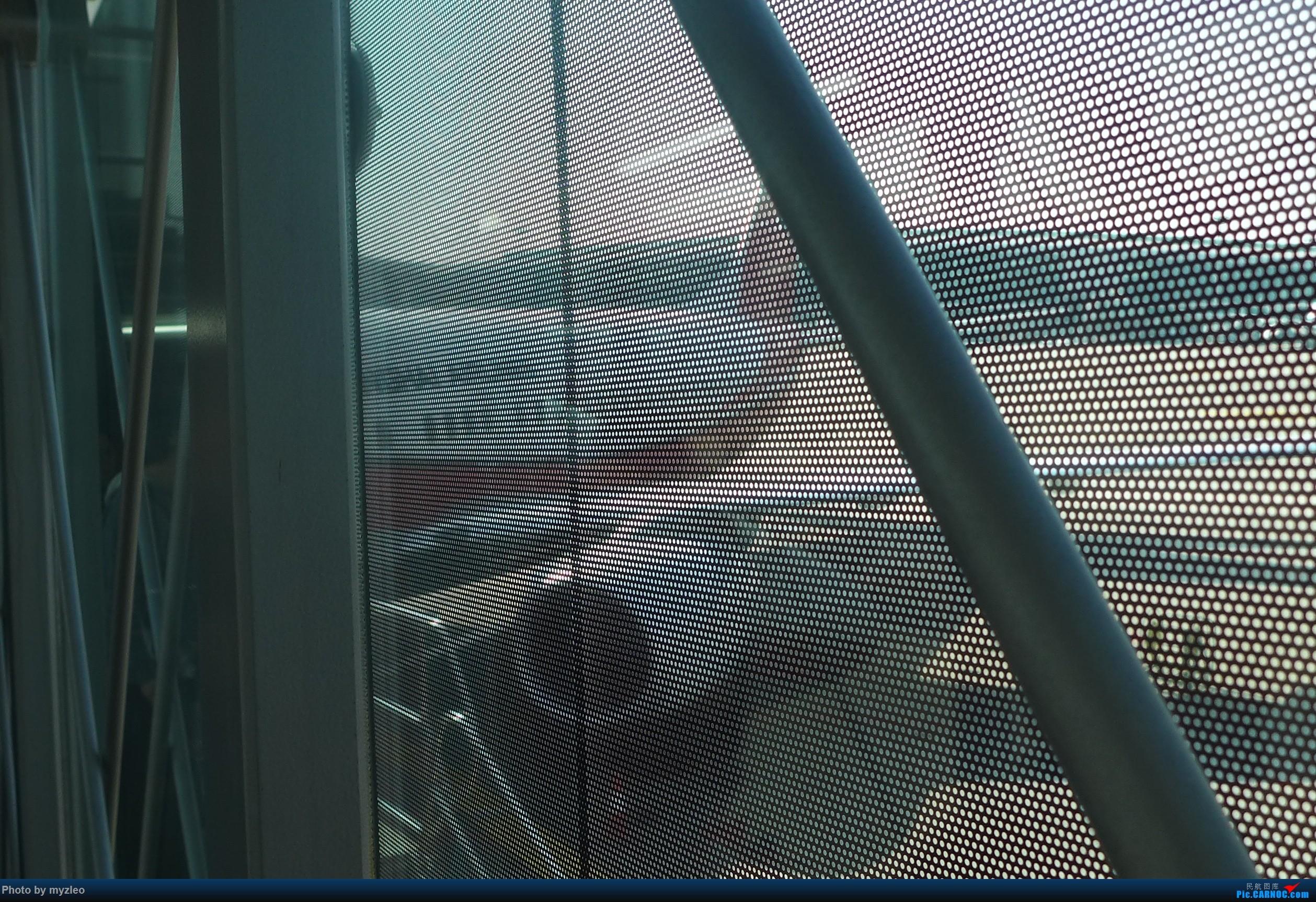 Re:[原创]【myzleo的游记1】六天五晚广州行——SHA-CAN上航商务舱初体验+广州城内 BOEING 737-800 B-1452 中国广州白云国际机场