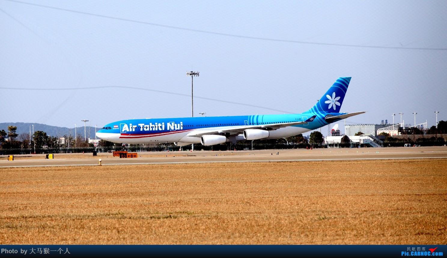 Re:[原创]补发九月末成田拍机 AIRBUS A340-300