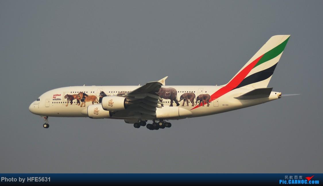 Re:[原创]【合肥飞友会】杂图一组,快两年没冒泡了,出来刷一下存在感 AIRBUS A380-800 A6-EEI 中国上海浦东国际机场