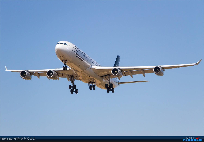 Re:[原创]【ZYTX】用100张图告别我的第二故乡——沈阳 AIRBUS A340-300 D-AIFE 中国沈阳桃仙国际机场