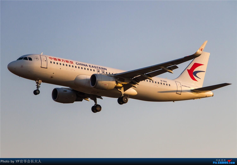 Re:[原创]【ZYTX】用100张图告别我的第二故乡——沈阳 AIRBUS A320-200 B-1610 中国沈阳桃仙国际机场