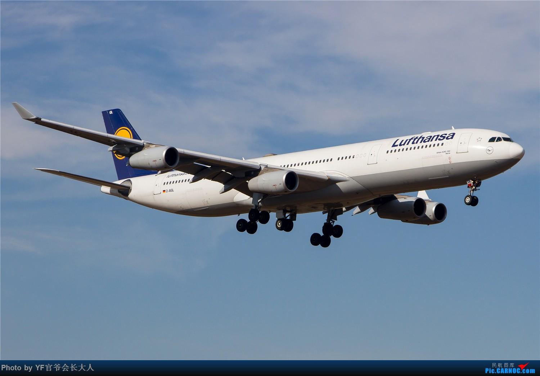 Re:[原创]【ZYTX】用100张图告别我的第二故乡——沈阳 AIRBUS A340-300 D-AIGL 中国沈阳桃仙国际机场