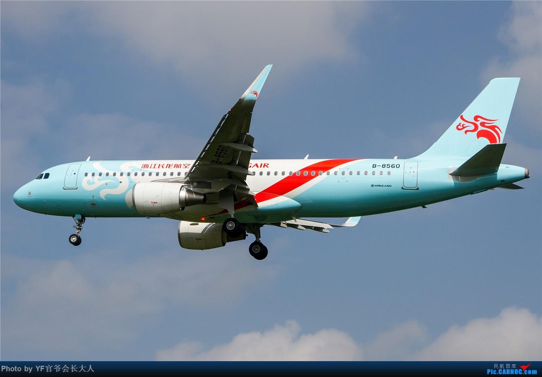 Re:[原创]【ZYTX】用100张图告别我的第二故乡——沈阳 AIRBUS A320-200 B-8560 中国沈阳桃仙国际机场