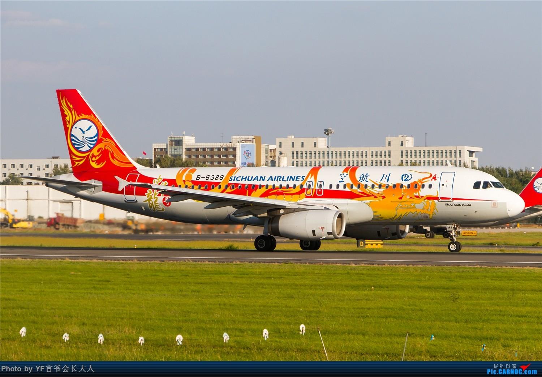 Re:[原创]【ZYTX】用100张图告别我的第二故乡——沈阳 AIRBUS A320-200 B-6388 中国沈阳桃仙国际机场