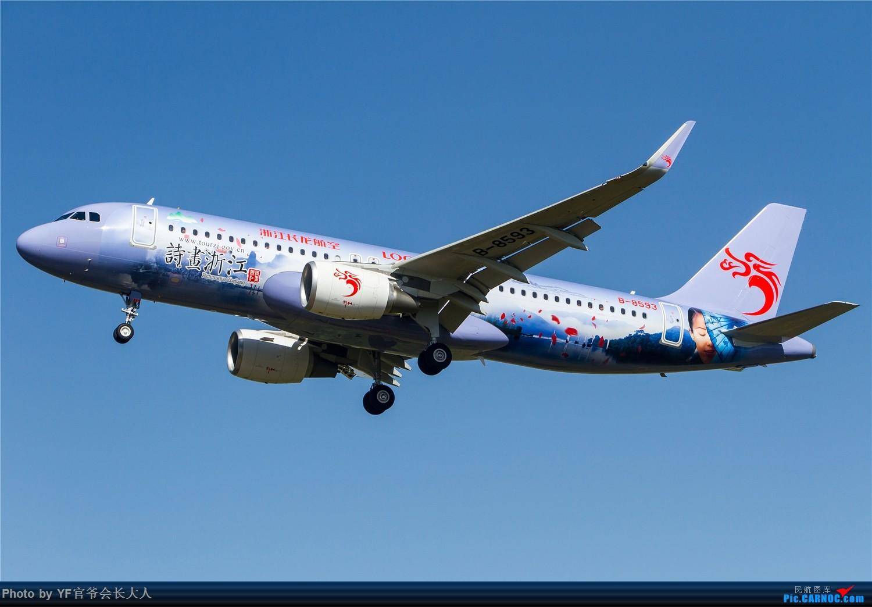 Re:[原创]【ZYTX】用100张图告别我的第二故乡——沈阳 AIRBUS A320-200 B-8593 中国沈阳桃仙国际机场