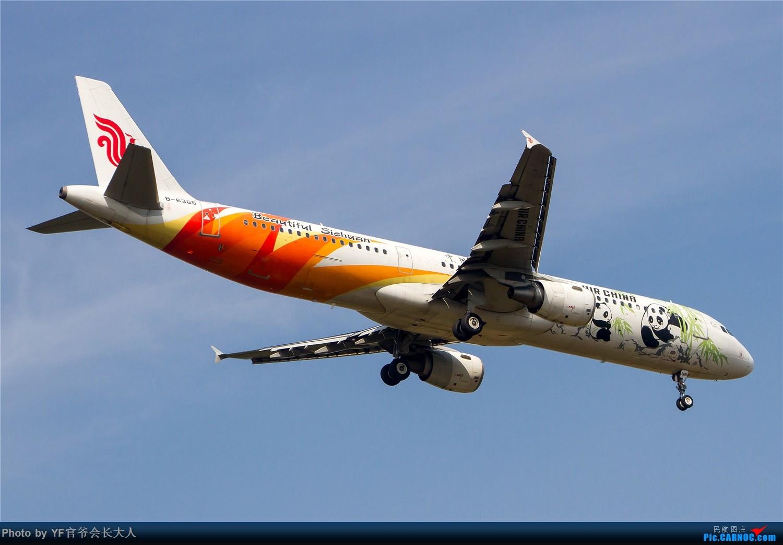Re:[原创]【ZYTX】用100张图告别我的第二故乡——沈阳 AIRBUS A321-200 B-6365 中国沈阳桃仙国际机场