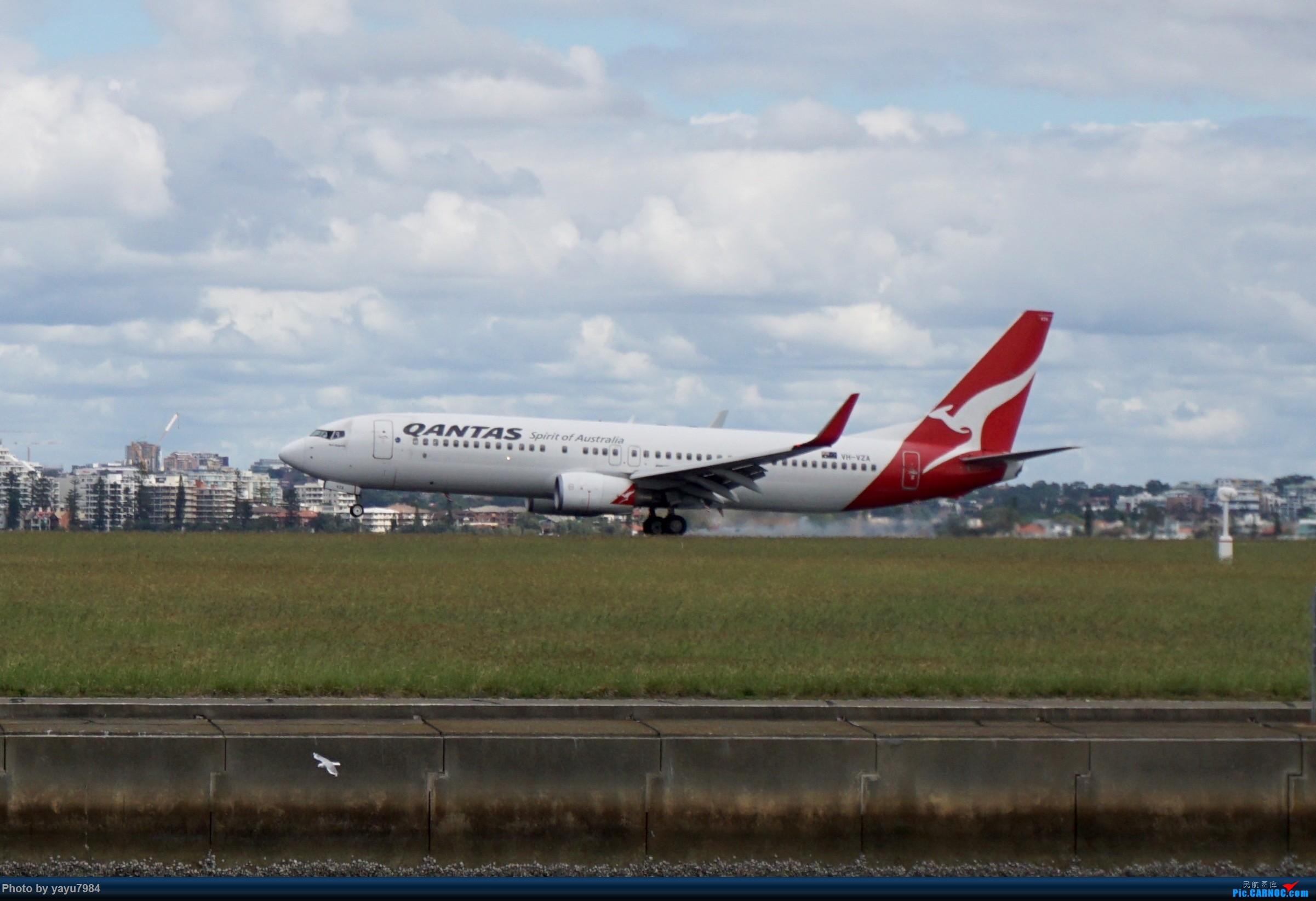 Re:[原创][SYD] 开帖分享一下16L/34R,以及07/25跑道周边的新拍机点位 BOEING 737-800 VH-VZA 澳大利亚悉尼金斯福德·史密斯机场