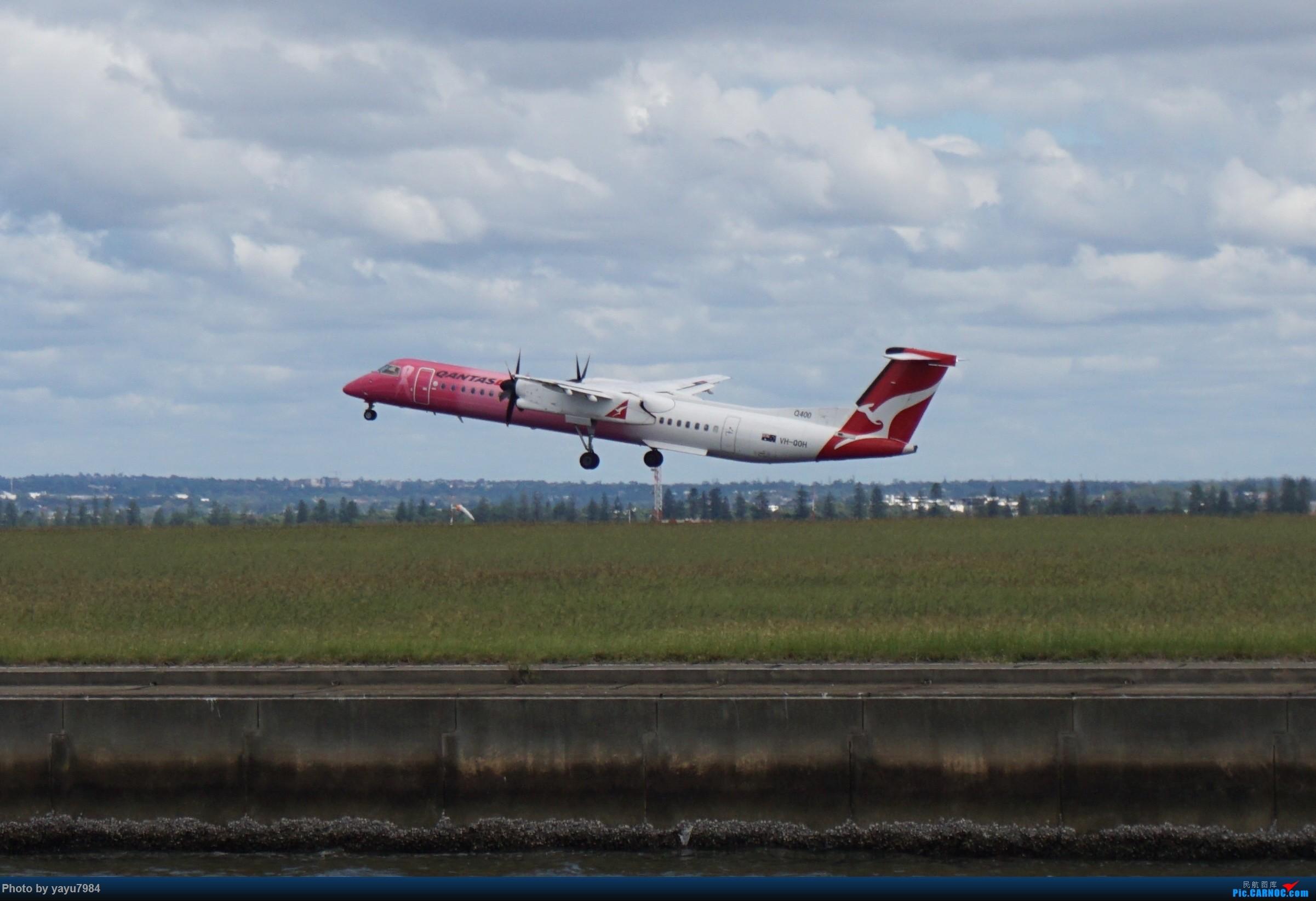 Re:[原创][SYD] 开帖分享一下16L/34R,以及07/25跑道周边的新拍机点位 DE HAVILLAN CANADA DHC-8-400 VH-QOH 澳大利亚悉尼金斯福德·史密斯机场
