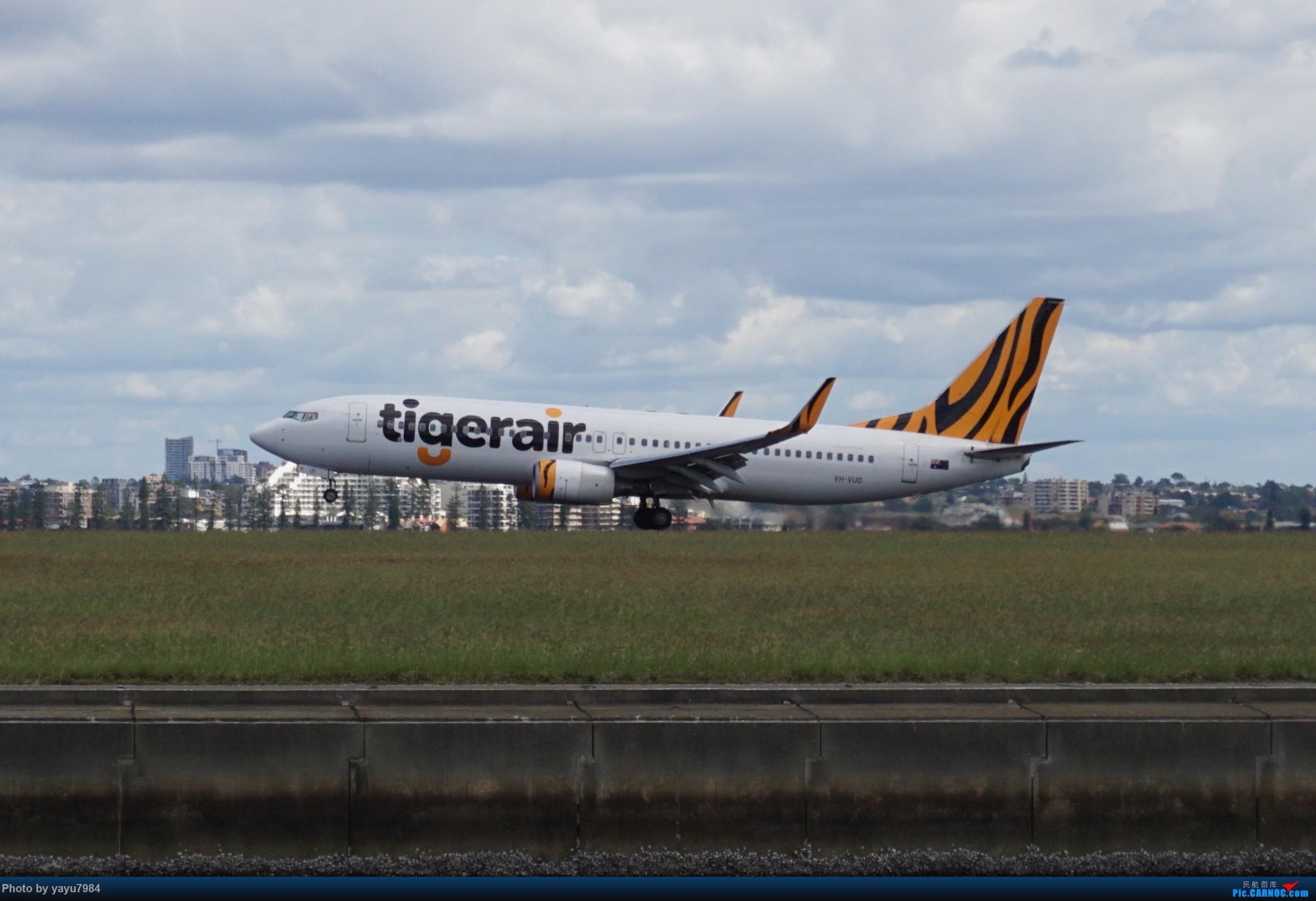 Re:[原创][SYD] 开帖分享一下16L/34R,以及07/25跑道周边的新拍机点位 BOEING 737-800 VH-VUD 澳大利亚悉尼金斯福德·史密斯机场