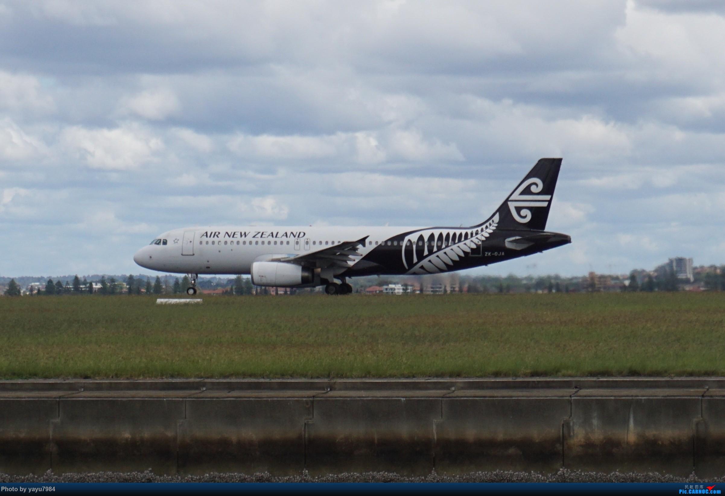 Re:[原创][SYD] 开帖分享一下16L/34R,以及07/25跑道周边的新拍机点位 AIRBUS A320-200 ZK-OJA 澳大利亚悉尼金斯福德·史密斯机场