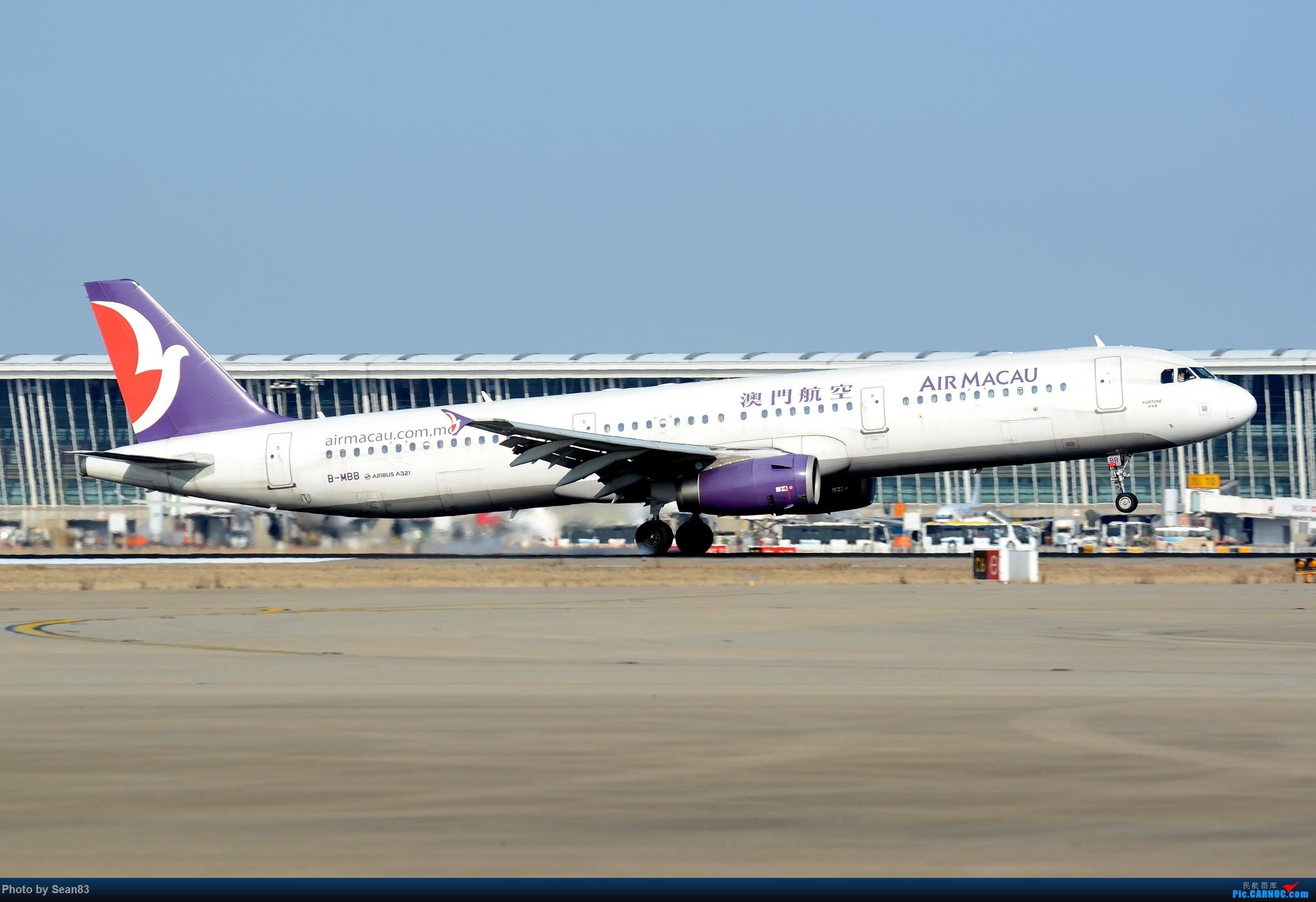 [原创](PVG)Air macau AIRBUS A321-200 B-MBB 中国上海浦东国际机场