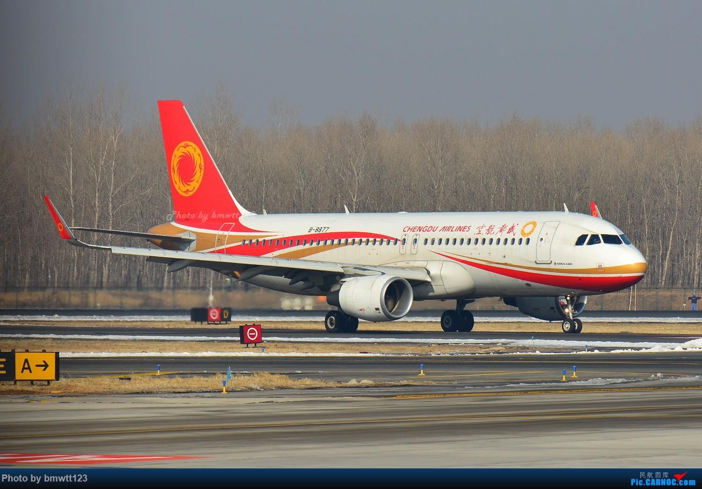 Re:[原创]【SHE沈阳】第43次桃仙拍机!好久没拍了。。。 AIRBUS A320-200 B-8877 中国沈阳桃仙国际机场