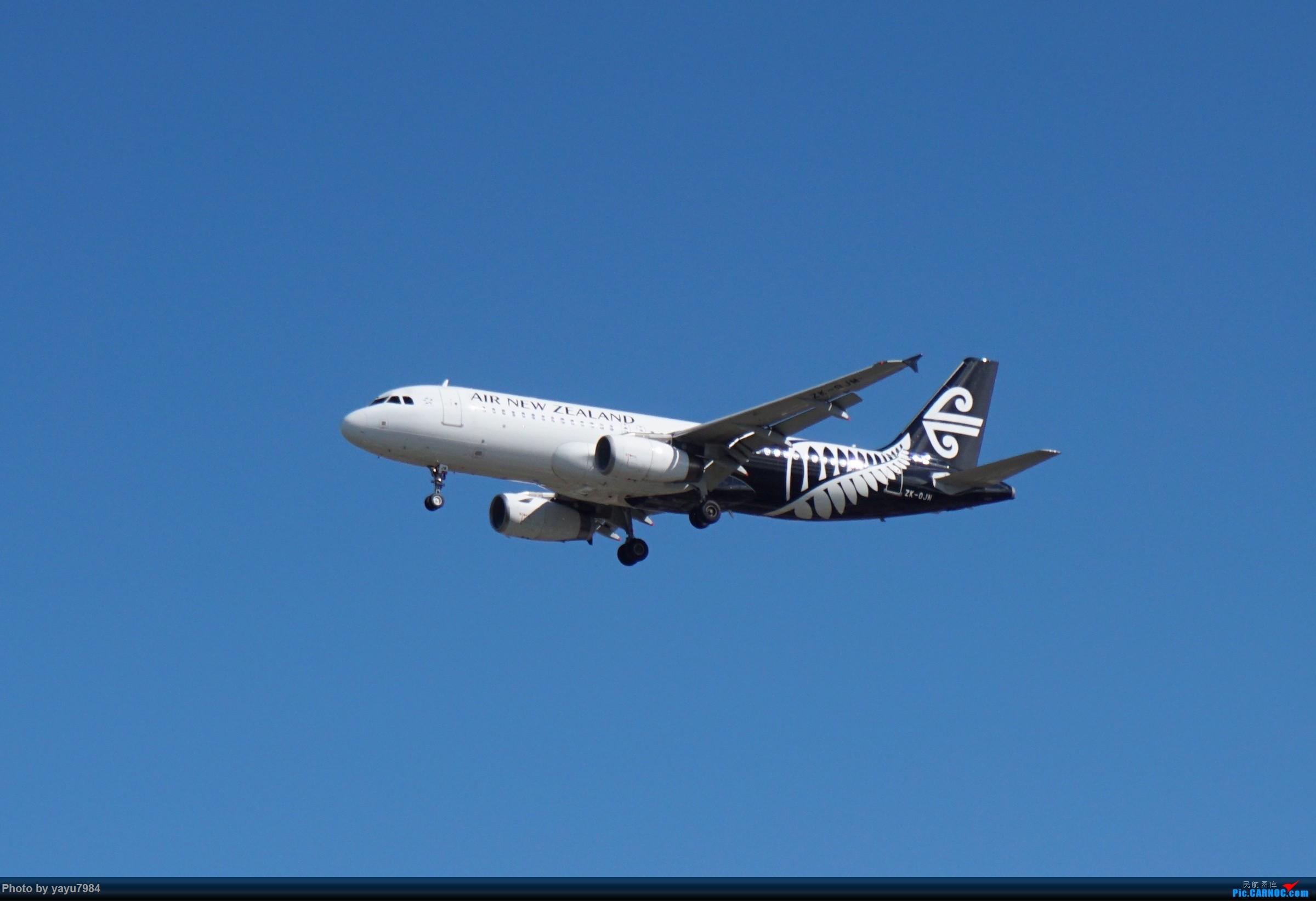 Re:[原创][SYD] 开帖分享一下16L/34R,以及07/25跑道周边的新拍机点位 AIRBUS A320-200 ZK-OJM 澳大利亚悉尼金斯福德·史密斯机场