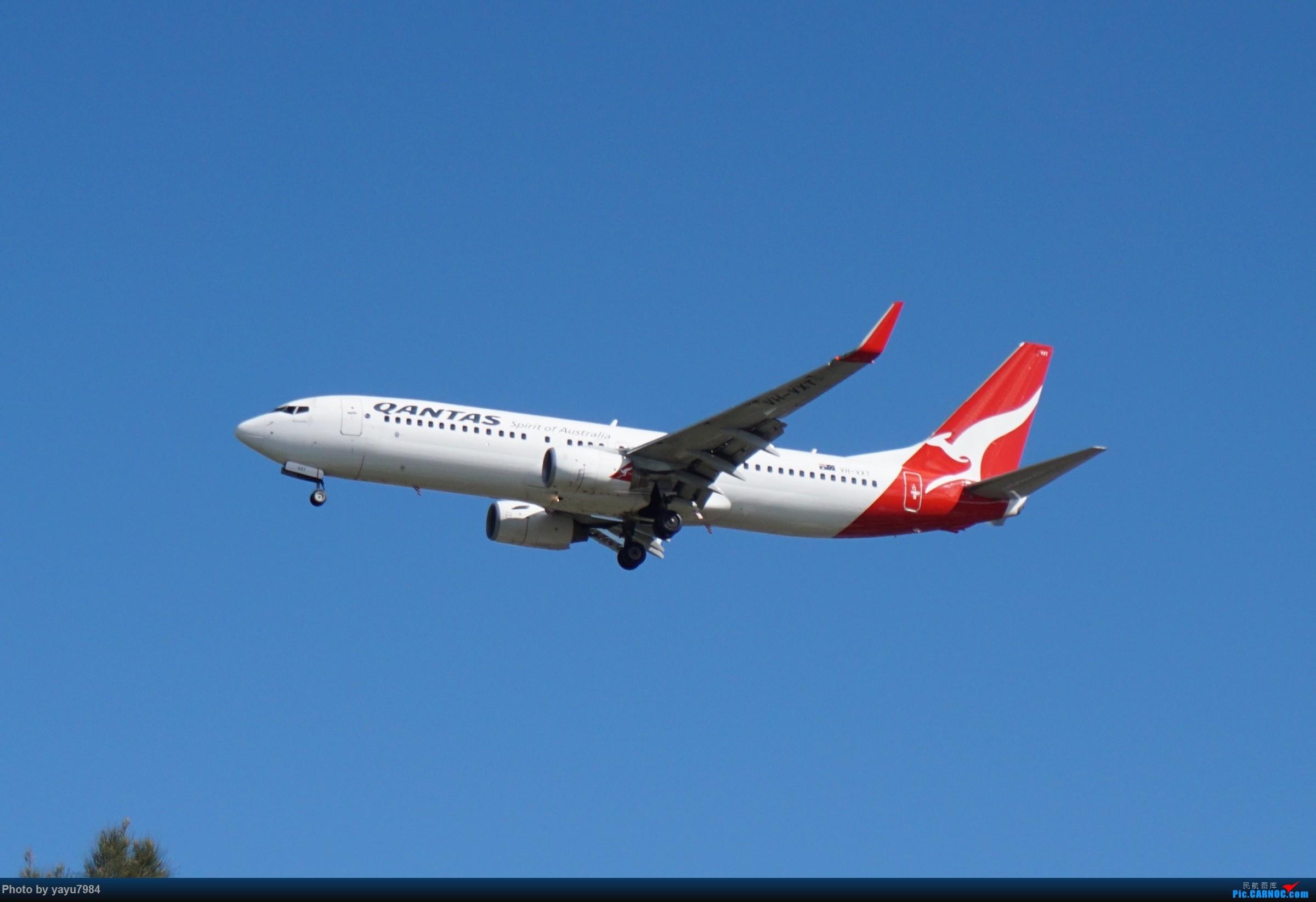 Re:[原创][SYD] 开帖分享一下16L/34R,以及07/25跑道周边的新拍机点位 BOEING 737-800 VH-VXT 澳大利亚悉尼金斯福德·史密斯机场