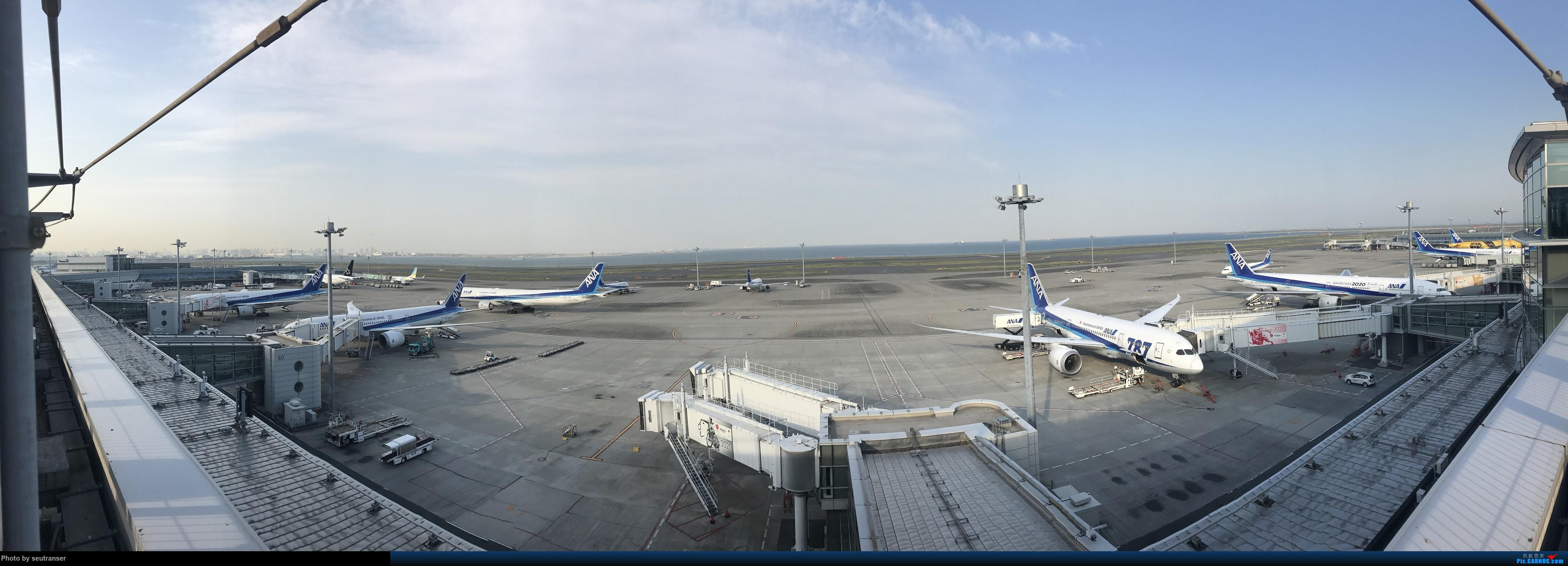 Re:[原创]迟到一年的游记,记第一次出国游—日本 东航往返+ANA国内线    日本东京羽田国际机场