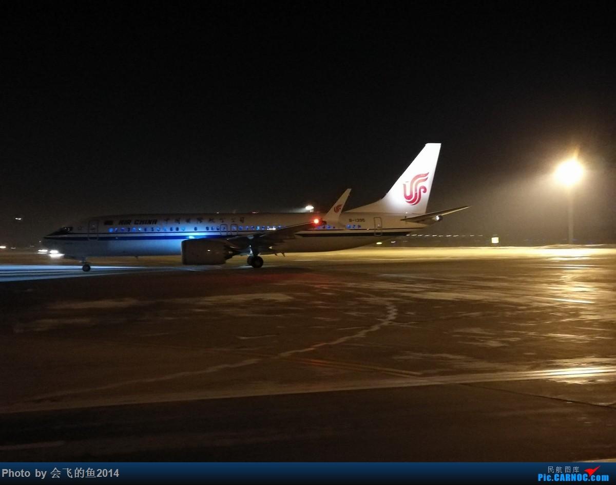 [原创]2018年2月-3月桃仙机场拍机  空军歼11护航志愿军烈士回国 737MAX8