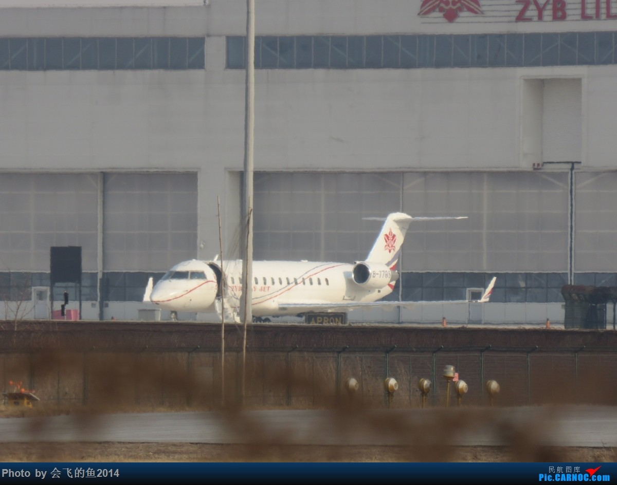Re:[原创]2018年2月-3月桃仙机场拍机  空军歼11护航志愿军烈士回国 CL850
