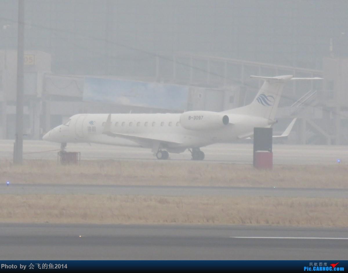 Re:[原创]2018年2月-3月桃仙机场拍机  空军歼11护航志愿军烈士回国 莱格塞650