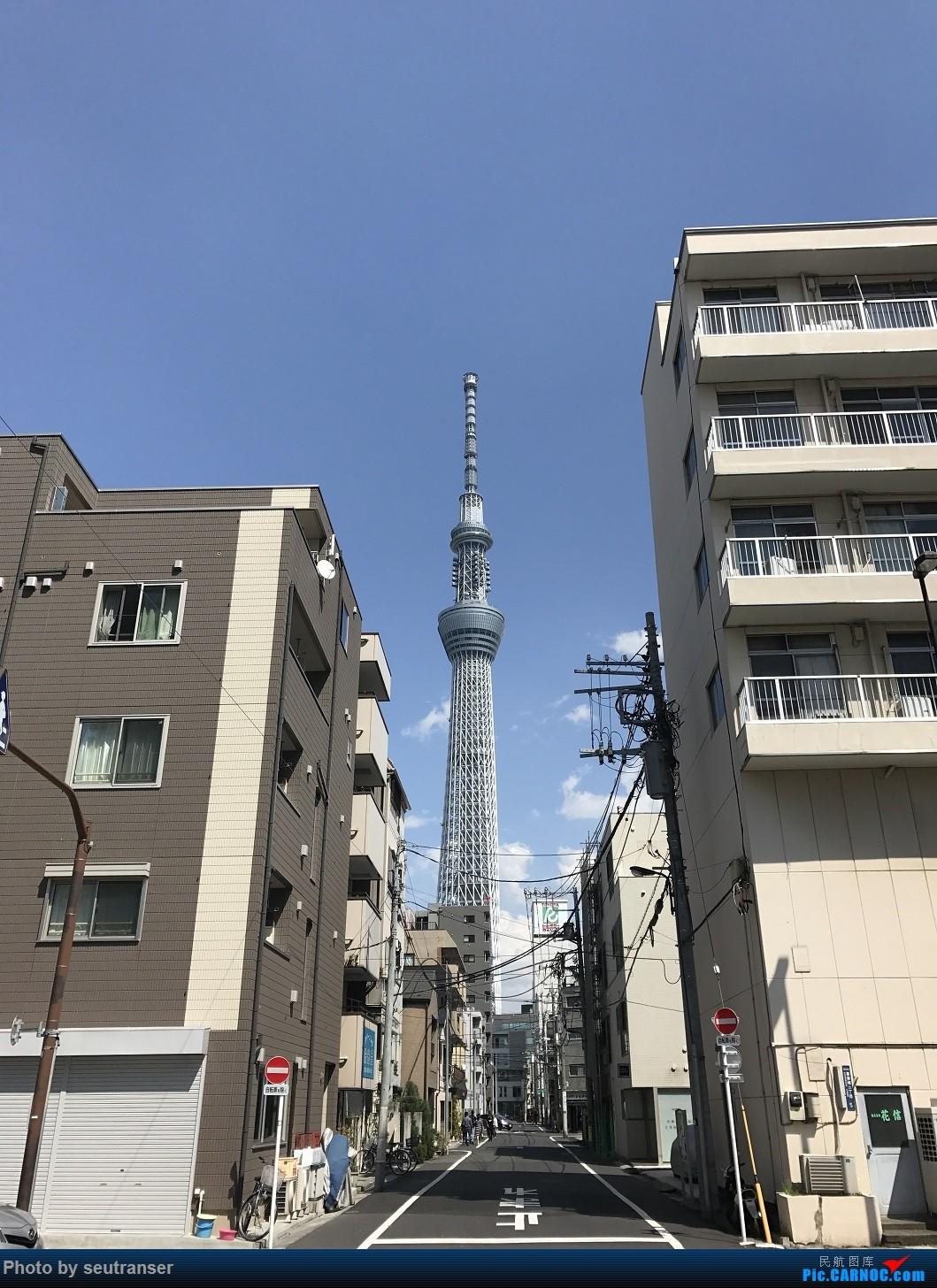 Re:[原创]迟到一年的游记,记第一次出国游 日本10天东航往返+ANA国内线+羽田机场拍机