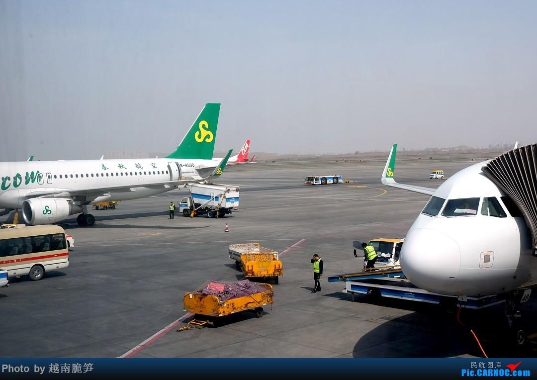 Re:[原创]【大西洋最后的一滴泪:赛里木湖】新疆伊犁行记 AIRBUS A320-200 B-8590 中国乌鲁木齐地窝堡国际机场