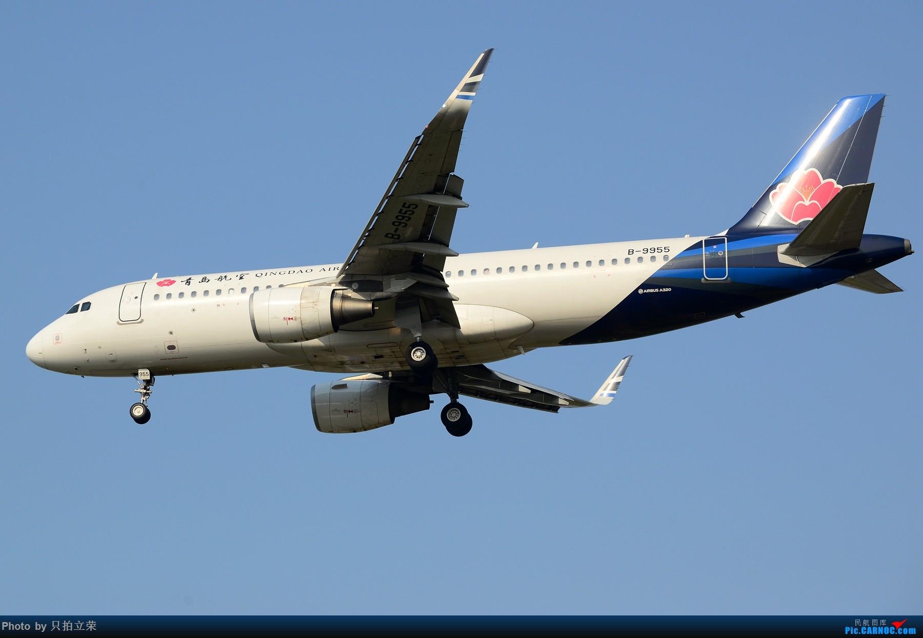 [原创]湖南飞友会:黄花机场首拍飞行的青岛航空,另外好天气不可辜负多送几张好飞机 AIRBUS A320-200 B-9955 中国长沙黄花国际机场