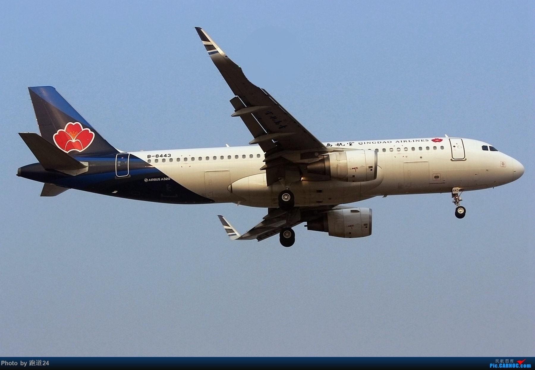 [原创][多图党]靓图一组 AIRBUS A320-200 B-8443 中国成都双流国际机场