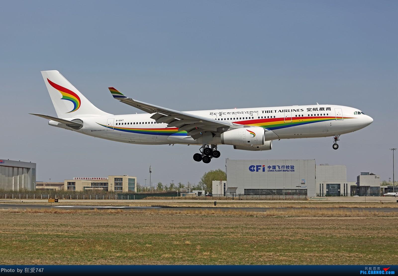 一张图:西藏航空空客330 AIRBUS A330-200 B-1047 中国北京首都国际机场
