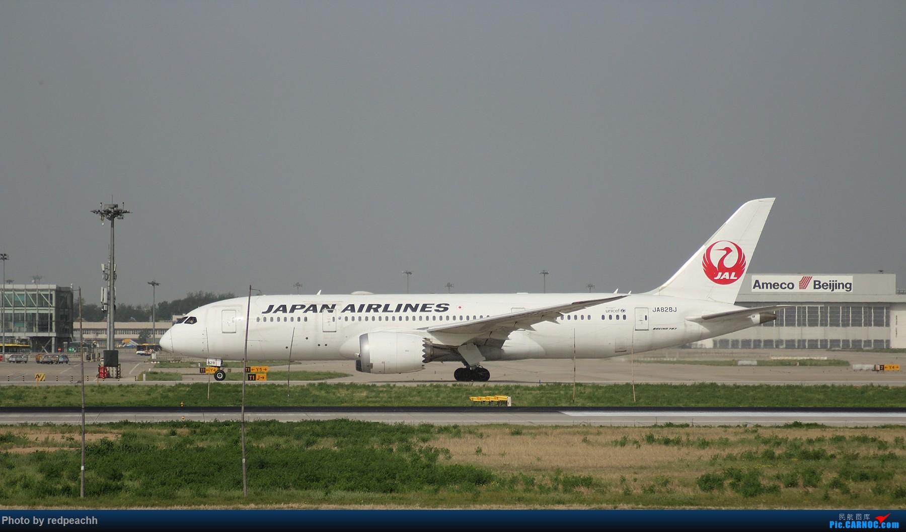 [原创]解锁首都机场东跑新姿势 BOEING 787-8 JA828J 中国北京首都国际机场