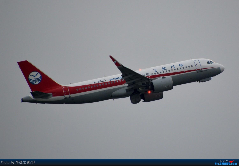 Re:[原创]欢迎南航首架波音787-9回家 AIRBUS A320NEO B-8683 中国广州白云国际机场