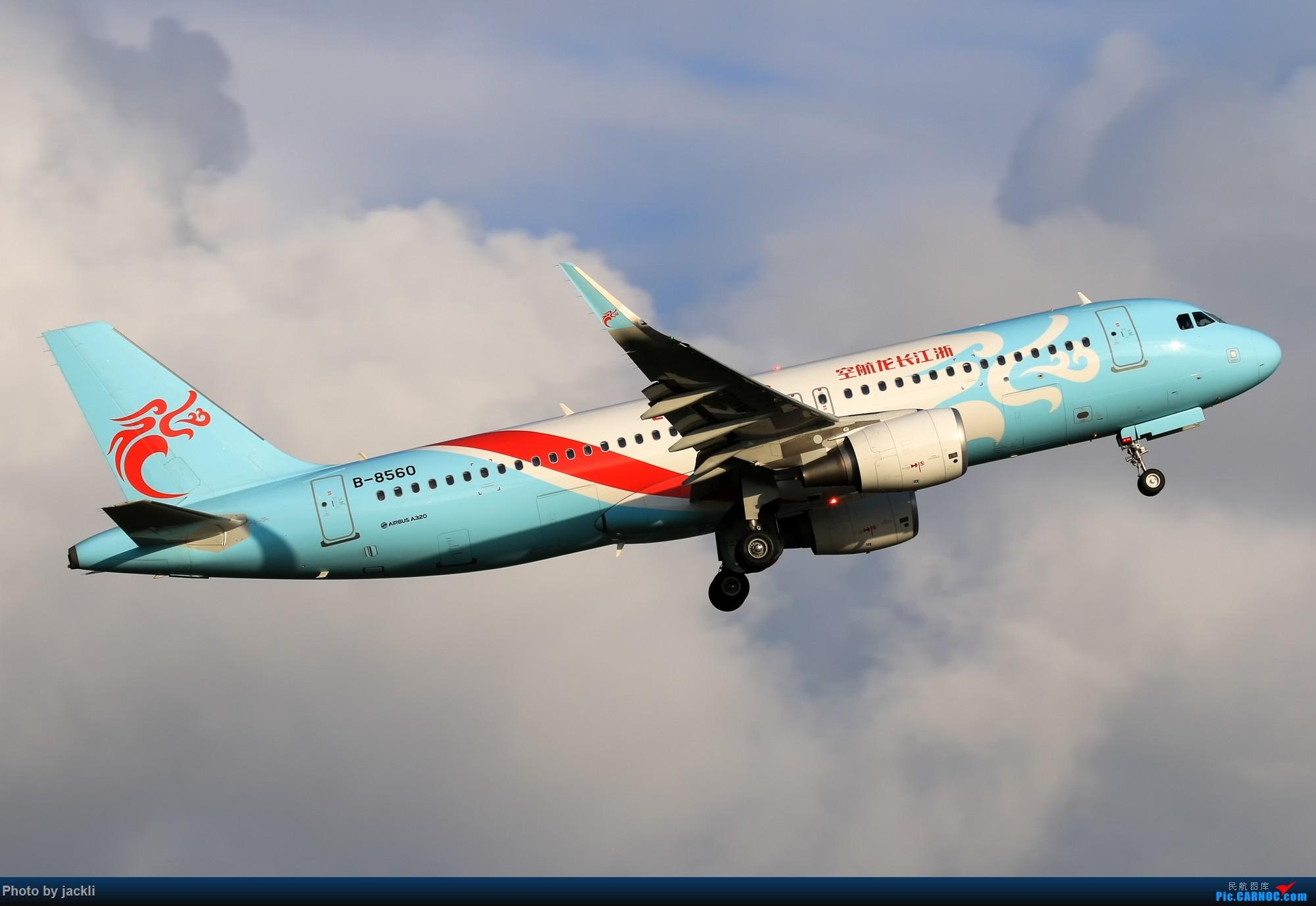 Re:[原创]【JackLi】航展之外的繁忙--近期珠海机场拍机~ AIRBUS A320-200 B-8560 中国珠海金湾机场