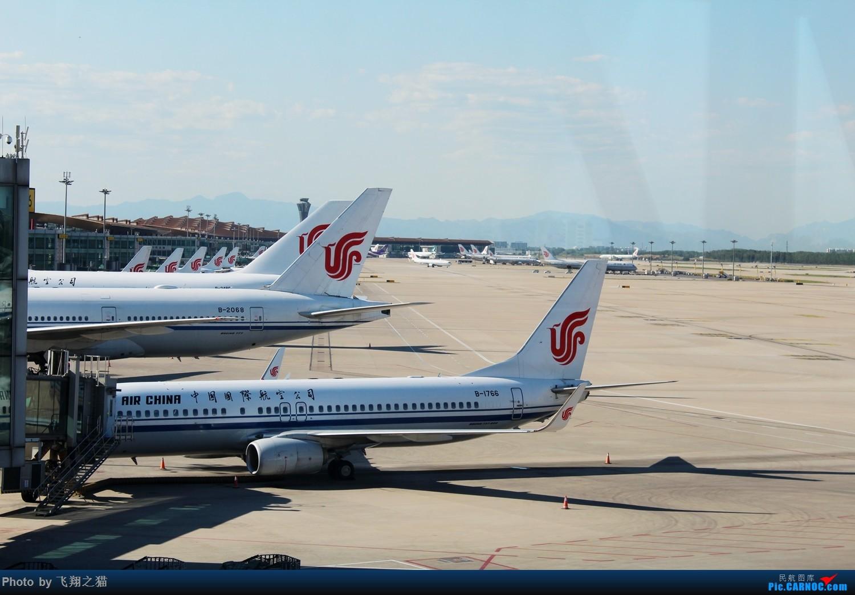 Re:[原创]飞翔之猫游记(俩兄弟帝都一日游)    中国北京首都国际机场